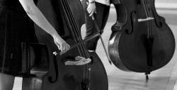 """Formation """"administration de la musique et du spectacle vivant"""""""